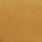 Calder Sahara